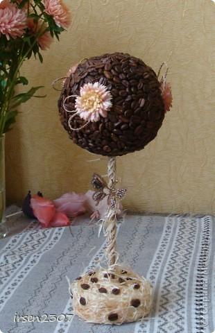 Очередное кофейное дерево доделанное фото 1
