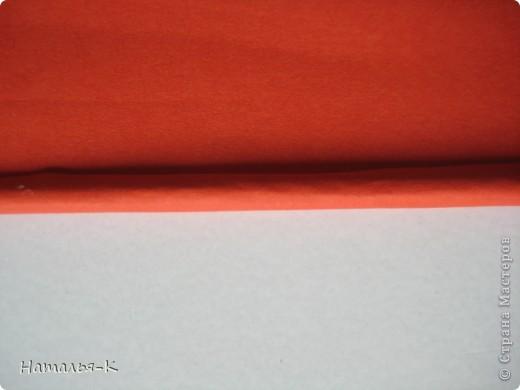Рамочка из бумажных трубочек.  фото 5