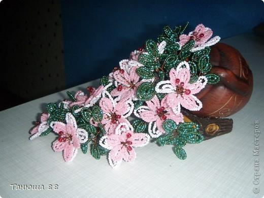 Цветы из горшка фото 2