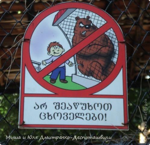 Тбилисский зоопарк встретил нас множеством запретов с юмором )) К сожалению всех животных зоопарка мы здесь представить не сможем, так как удачное фото сделать было довольно непросто. Так за кадром остались обезьяны, волки, шакалы, яки, олени, дикобразы...  фото 1
