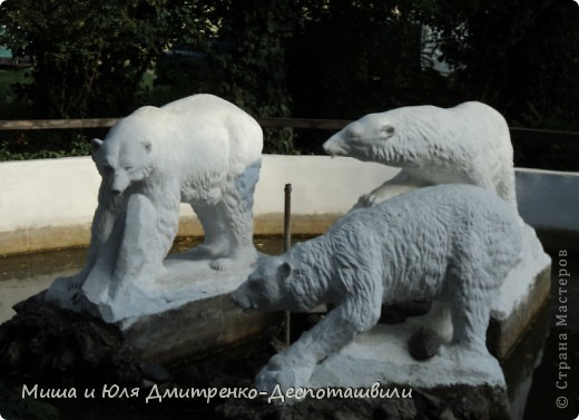 Тбилисский зоопарк встретил нас множеством запретов с юмором )) К сожалению всех животных зоопарка мы здесь представить не сможем, так как удачное фото сделать было довольно непросто. Так за кадром остались обезьяны, волки, шакалы, яки, олени, дикобразы...  фото 9