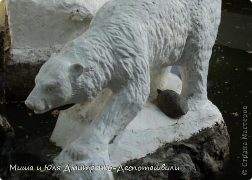 Тбилисский зоопарк встретил нас множеством запретов с юмором )) К сожалению всех животных зоопарка мы здесь представить не сможем, так как удачное фото сделать было довольно непросто. Так за кадром остались обезьяны, волки, шакалы, яки, олени, дикобразы...  фото 10
