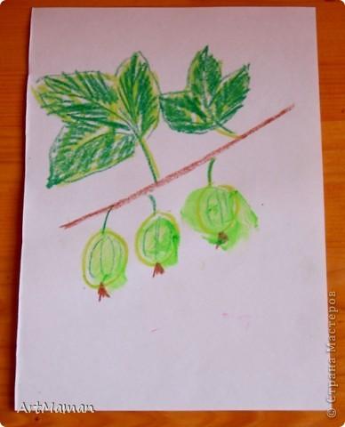 Рисовали мы, рисовали с дочей просто на белой бумаге… А потом к маме прилетел Пегас и подкинул идею… И вот мы с Пегасом, пока доча спала, нарисовали небольшую стопочку самодельных раскрасок для пальчиковых рисовашек.  А в процессе раскрашивания закрепили с детью (2 года) две техники – тыкать пальчиком в маленькие кружочки (смородина, облепиха и т.п.) и закрашивать/замазывать чуть более крупные кружки и овалы (сливы, виноград…) :).  И темы такие знакомо-летние: ягодки-цветочки (что в лесу, да на огороде растут, ну и еще виноград на рынке вместе покупали…). Заодно еще взяли чайники-кофейники (чашки, тарелки, кастрюльки и т.п.). Рисовали пальчиковыми красками (6 цветов) – поэтому рисунки старалась подобрать под имеющиеся у нас цвета. Формат рисунков А5 (т.е. половина от обычного белого листа для принтера) – так нам показалось удобней.  В результате деть была в полном восторге! За один присест по 5-6 раскрасок раскрашивала. И потом с гордостью демонстрировала свои шедевры папе и бабушке. А на другой день просила еще «тыкать краской» :)  Вот, что у нас вышло. Это черная смородина. фото 8