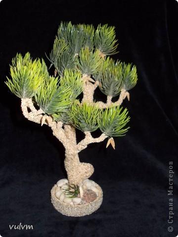 первое дерево из новой серии - проба фото 4