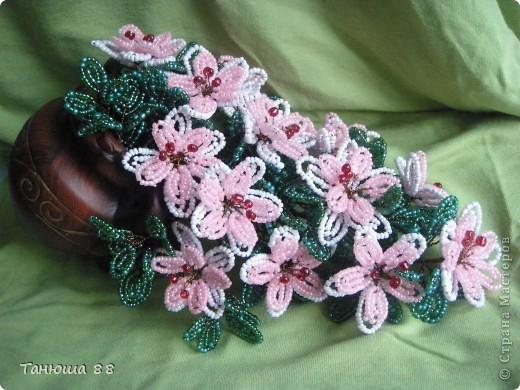 Цветы из горшка фото 1