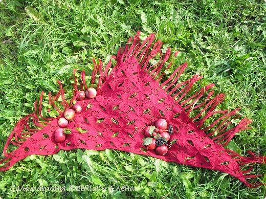 Бактус готов! В этом году у нас богатый урожай яблок, травка в саду еще зелененькая. фото 1