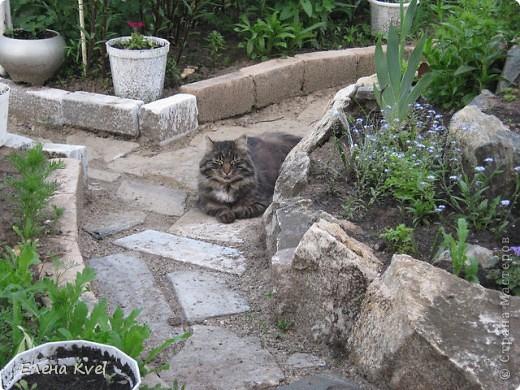 Каменистая горка перед домиком фото 4