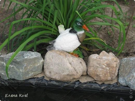 Каменистая горка перед домиком фото 10