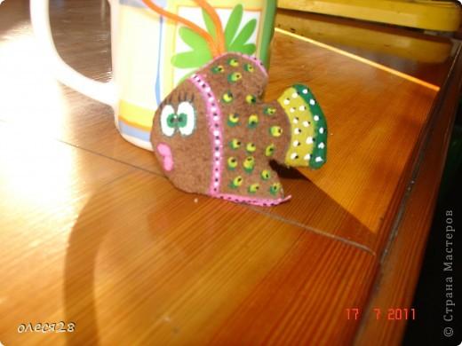 кофейные рыбки фото 3