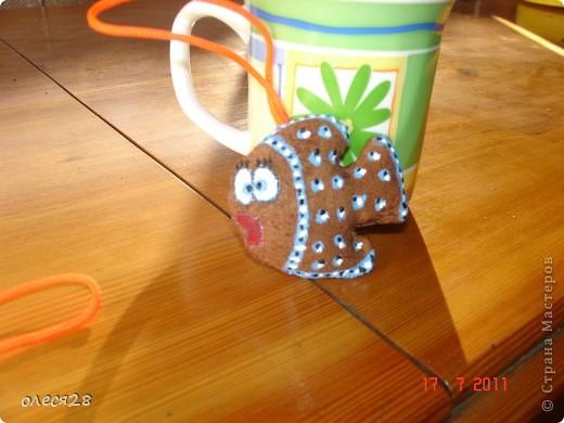 кофейные рыбки фото 5