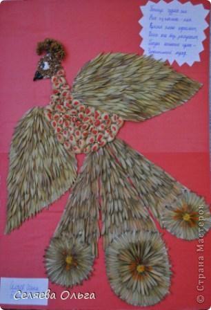 Это жар-птица. Делали вместе с сыном. Материал - семена ясеня, скорлупки от фисташек, гречка, цветки ноготков, картон, а самое главное большое количество клея ПВА. фото 1