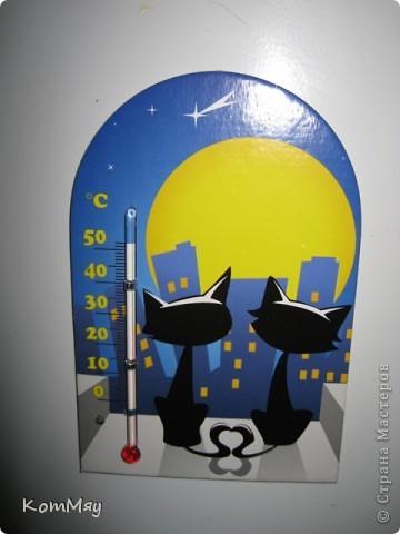 Выкладываю первую часть своей коллекции магнитов.  Тема - КОШКИ.  Этот магнит куплен в подмосковном городе Верея. Пластик фото 41