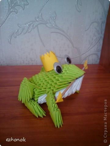 Царевна - Лягушка фото 3