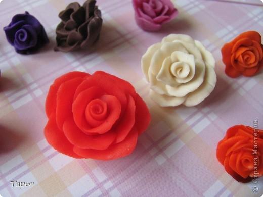 Буду вести кружок для девчонок в школе. Вот училась делать разные цветочки. Очень захватил меня этот процесс. Правда кроме шоколадных цветочков, остальные пока никуда не применила.  фото 6