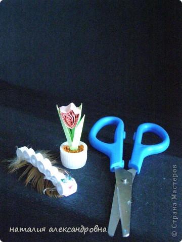 сансивьера в крышке от клея-карандаша на пластилине фото 21