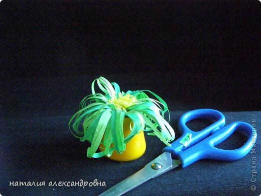 сансивьера в крышке от клея-карандаша на пластилине фото 12