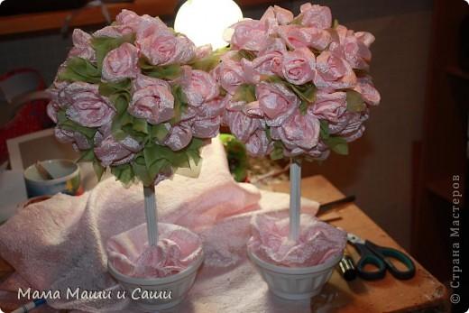 Свадебные топиарии - украсят стол молодых. фото 1