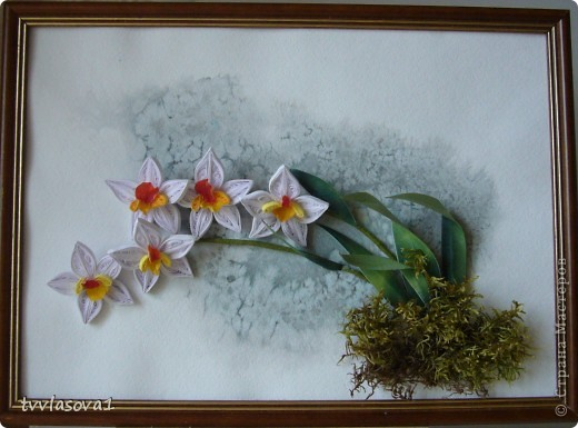 орхидея на ветру... фото 1