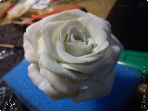 Мой первый цветочек...Я так долго не решалась его изготовить. Постоянно читала разные МК,и становилось страшно. Но потом мой Ромка отвез меня в магазин и заставил купить все необходимое. И вот она-свеженькая,а самое главное-моя!!! Я очень рада фото 1