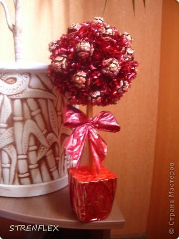 """После моего первого кипарисово дерева http://stranamasterov.ru/node/219032 решила сделать римейк, но в другом цвете! Насобирали в Форосе """"свеженьких"""" кипарисовых шишичек, и вот наконец-то я его выставляю (не прошло и пол года)))) фото 5"""