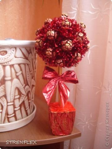 """После моего первого кипарисово дерева http://stranamasterov.ru/node/219032 решила сделать римейк, но в другом цвете! Насобирали в Форосе """"свеженьких"""" кипарисовых шишичек, и вот наконец-то я его выставляю (не прошло и пол года)))) фото 10"""