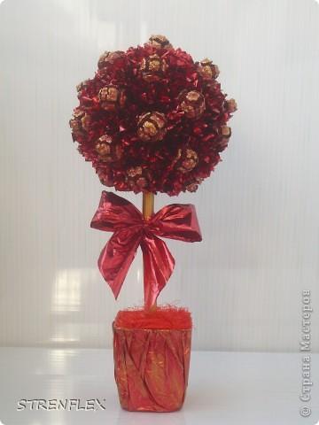 """После моего первого кипарисово дерева http://stranamasterov.ru/node/219032 решила сделать римейк, но в другом цвете! Насобирали в Форосе """"свеженьких"""" кипарисовых шишичек, и вот наконец-то я его выставляю (не прошло и пол года)))) фото 8"""