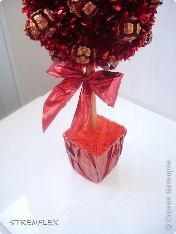 """После моего первого кипарисово дерева http://stranamasterov.ru/node/219032 решила сделать римейк, но в другом цвете! Насобирали в Форосе """"свеженьких"""" кипарисовых шишичек, и вот наконец-то я его выставляю (не прошло и пол года)))) фото 9"""