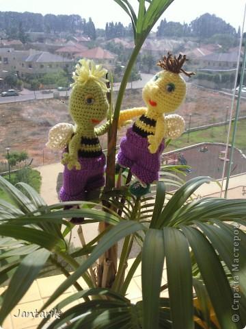 Братья -пчелята от Ната585. Связались ко дню рождения двух моих подруг.  фото 8