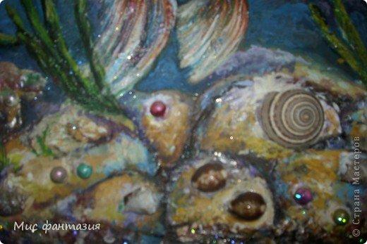 Морская жизнь фото 2