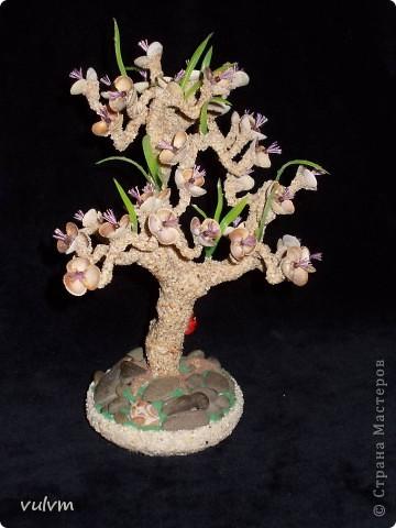 деревцо в одном из стилей бонсая фото 3
