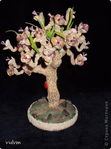 деревцо в одном из стилей бонсая фото 5