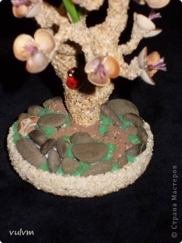 деревцо в одном из стилей бонсая фото 7
