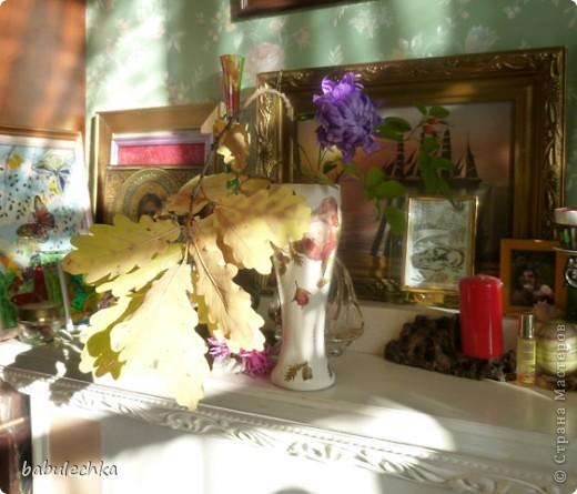 В процесс  показа  веточки дуба в вазочке  вмешался  кот Василий!..,,, фото 6