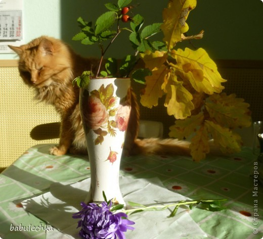 В процесс  показа  веточки дуба в вазочке  вмешался  кот Василий!..,,, фото 4