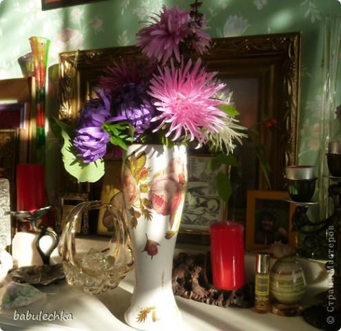 В процесс  показа  веточки дуба в вазочке  вмешался  кот Василий!..,,, фото 5