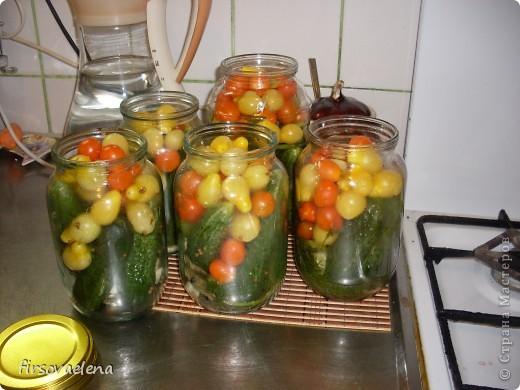 томаты в собственном соку, лечо, маринованные помидорчики фото 2