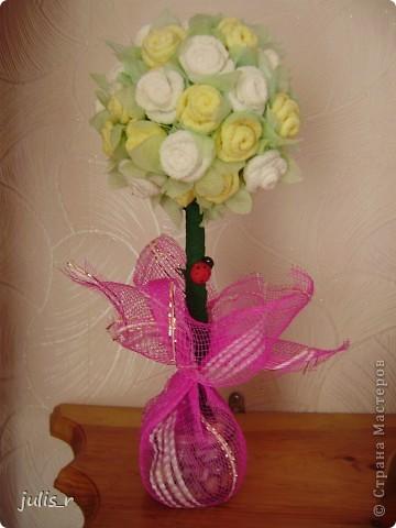 Дерево из роз фото 1