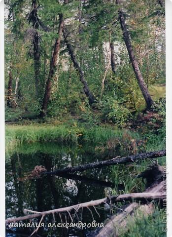 такое утро на озере Туручедо фото 14