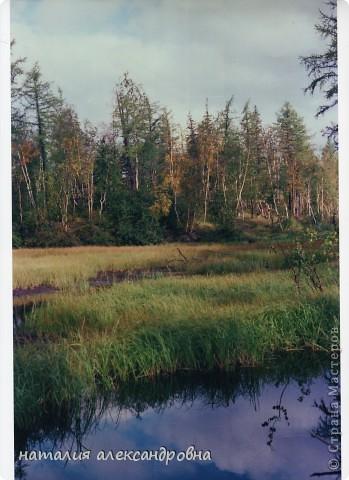 такое утро на озере Туручедо фото 15
