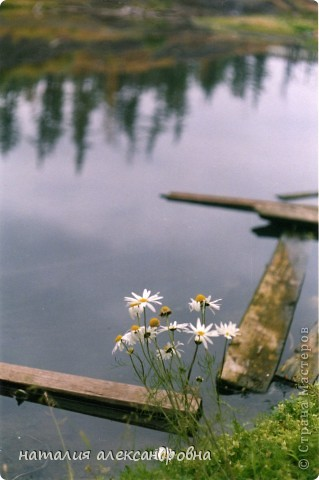 такое утро на озере Туручедо фото 28