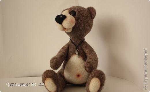 Новый медвежонок по имени Биме. С ирландского оно означает: медведь, карий. фото 4