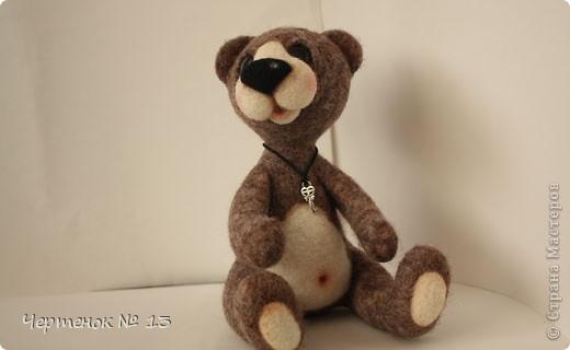Новый медвежонок по имени Биме. С ирландского оно означает: медведь, карий. фото 5