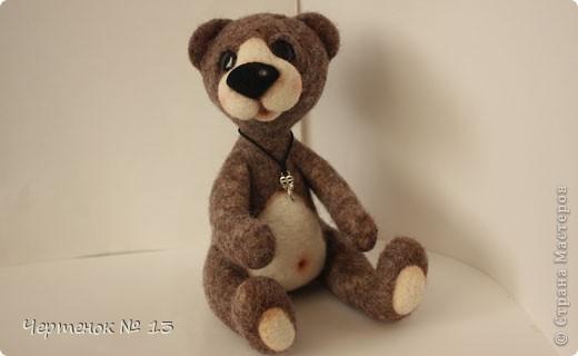 Новый медвежонок по имени Биме. С ирландского оно означает: медведь, карий. фото 6