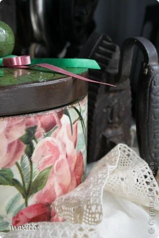 Чайная роза фото 4