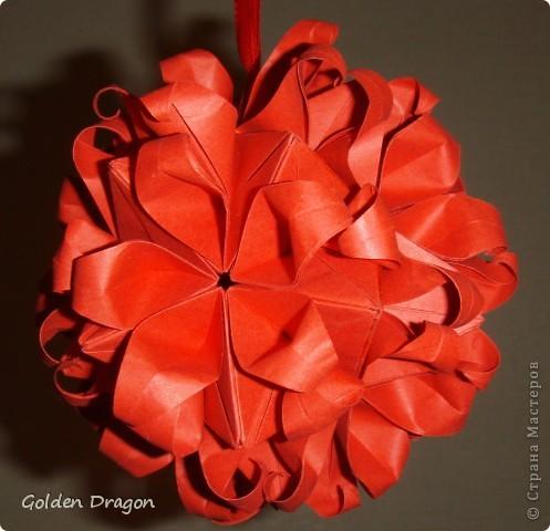 Passiflora  фото 1
