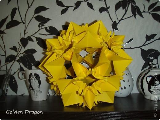 Passiflora  фото 2