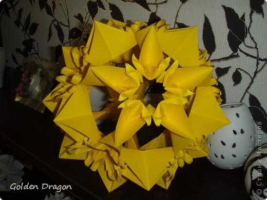 Passiflora  фото 3