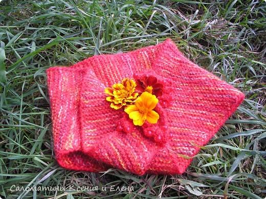 Расцветка нашего бактуса напоминает самые осенние цветы- бархатцы! фото 1