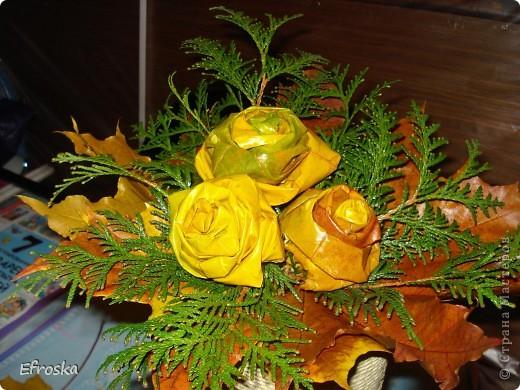 Сегодня в школе у детей начинается конкурс осенних букетов. Решили с дочкой поучаствовать. Соорудили вот такую корзину с розами из кленовых листьев. А делали мы эти розы по МК Татьяны Просняковой:  http://stranamasterov.ru/node/2168. А вдохновлялась работой Кукуськи http://stranamasterov.ru/node/103447 фото 8