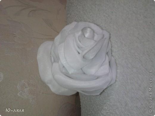это самые первые цветочки мои фото 2